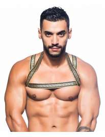 Harness Andrew Christian Massive Gladiator 600058