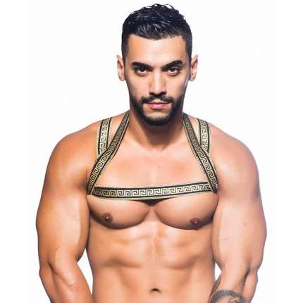 Harness Andrew Christian Massive Gladiator,600058