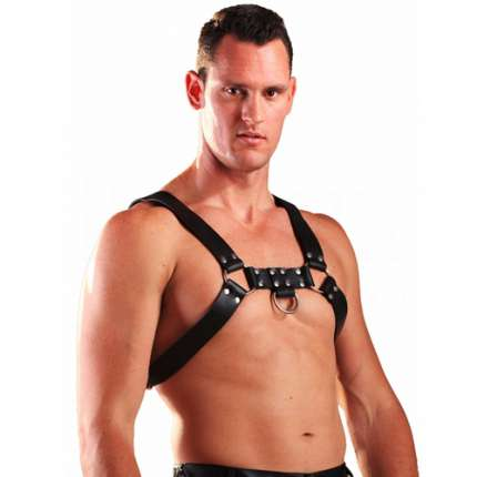 Harness H Leather Black 1113544