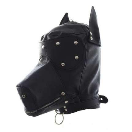 Hood of Black Dog,1873558