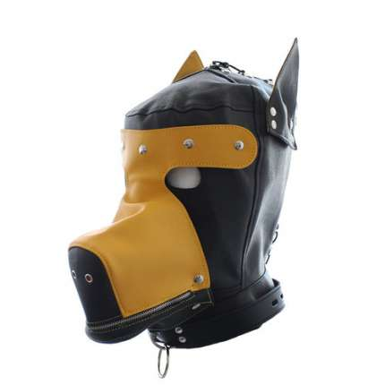 Hooded Dog Black and Yellow,1873559