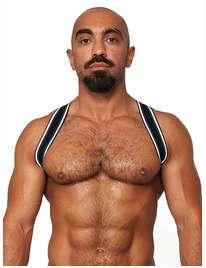 Harness Mister B-The Urban Club, The Sling,1114175
