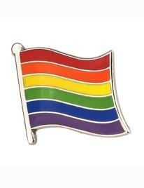 Pin Bandeira Arco-íris 8135081