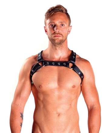 Harness X-Back Premium Black 601702