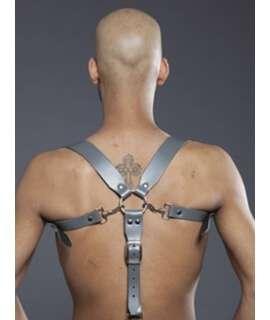 Combi Harness Braces Basic Cinzento,601116