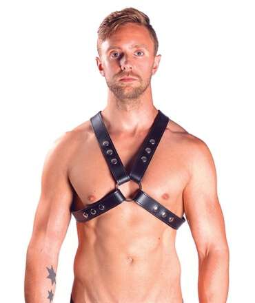 Harness Mister B Top Snap Studs,600105