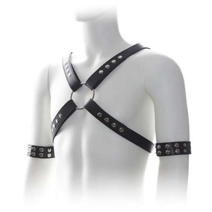 Harness with Black cable Ties 111019