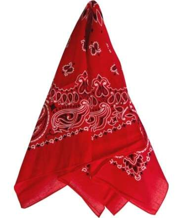 Red Scarf 413930